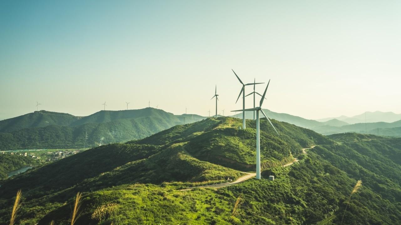 Emission reduction is 'flatlining' under the Coalition
