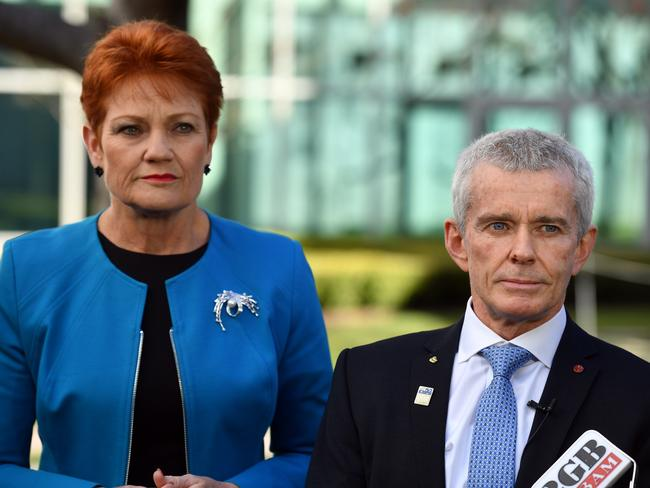One Nation leader Pauline Hanson has stood by senator Roberts during the citizenship case. Picture: AAP