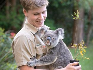 Robert Irwin at his home at Australia Zoo. For Kids News