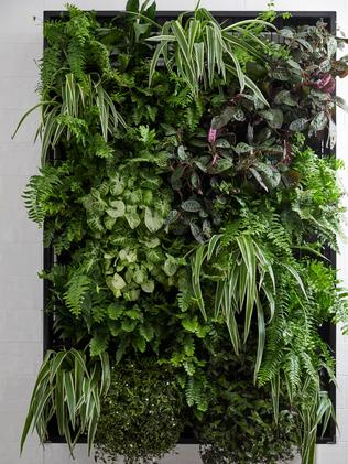 The judges didn't like their vertical garden, saying it didn't belong in their small bathroom. Source: The Block