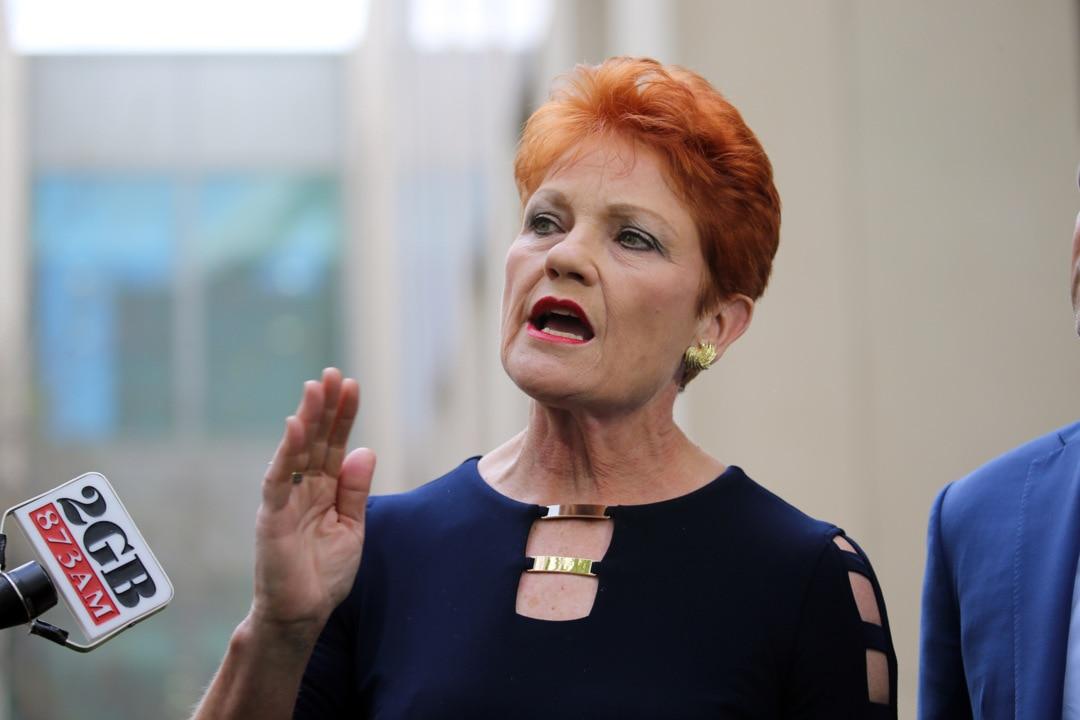 Pauline Hanson 'has questions' about Port Arthur