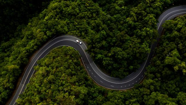 21/32A Daintree food trail Back on terra firma, set the compass due north for the spectacular Great Barrier Reef Drive and discover 30 different fresh and tasty local producers with the newly launched Daintree Food Trail. Picture: Tourism and Events Queensland