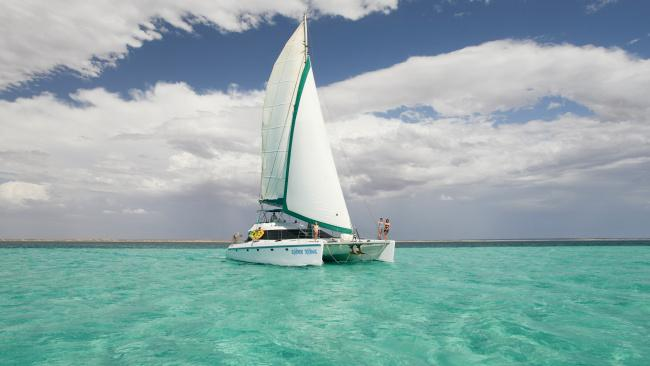 SAIL NINGALOO, WA Pack your swimmers as you set out on a 5-night tour of the beautiful Ningaloo Reef. Similar to a marine safari, on your six days at sea, you will encounter numerous sea creatures including turtles, manta rays and reef sharks.
