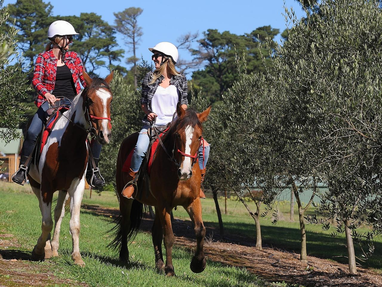 Horseback Winery Tours in the Mornington Peninsula. Picture: Supplied