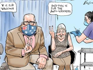 Mark Knight's V is for vaccine cartoon.