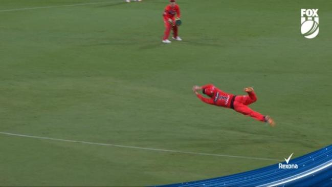 'Catch of the tournament that is!': Harvey takes amazing grab