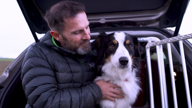 The dog that helped design a car