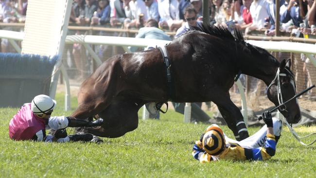 A horse was euthanised following a fall in the first jumps race at Oakbank. Picture: Tait Schmaal.