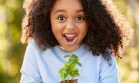 The secret brands that will score you bonus Discovery Garden plants
