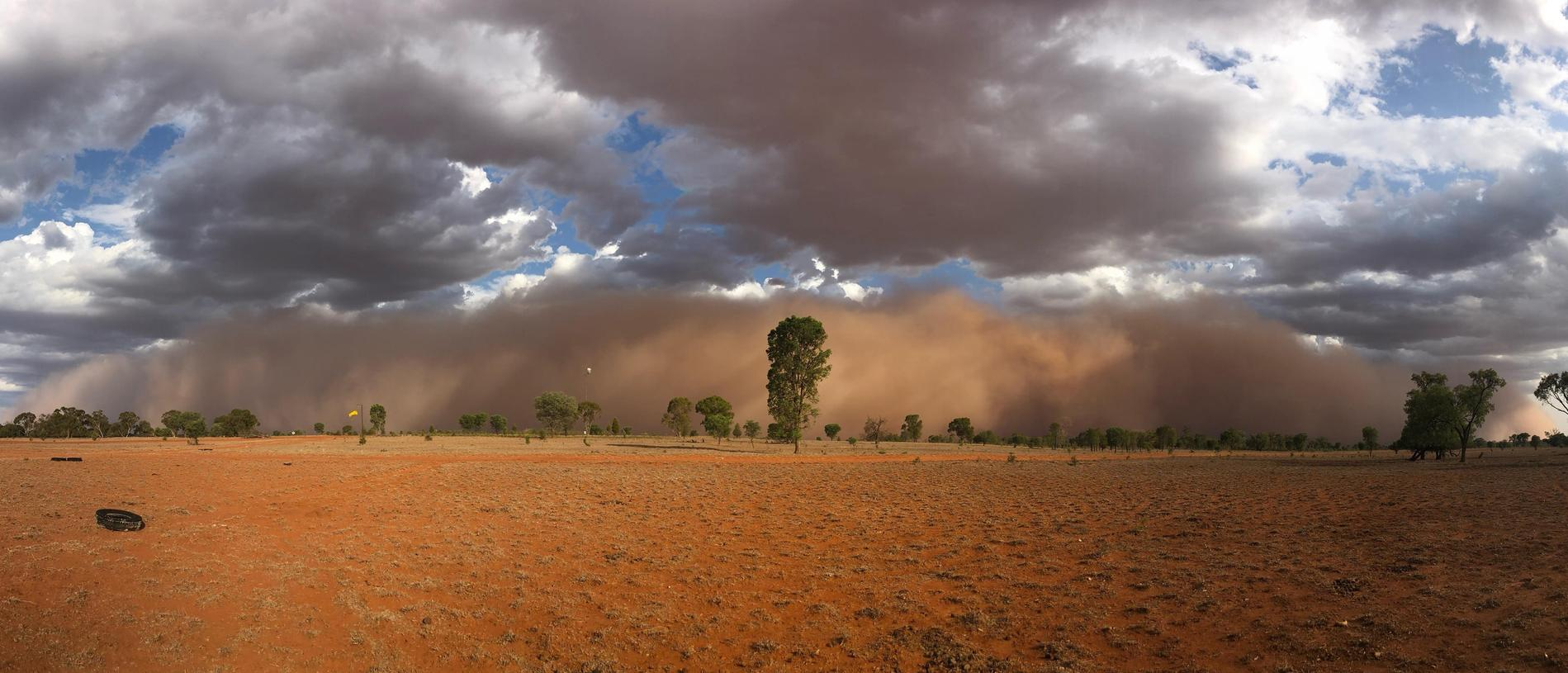 SOCIAL MEDIA IMAGE DISCUSS USE WITH YOUR EDITOR – A massive dust storm preceded 12mm of rain at Southampton, St George, on Thursday.