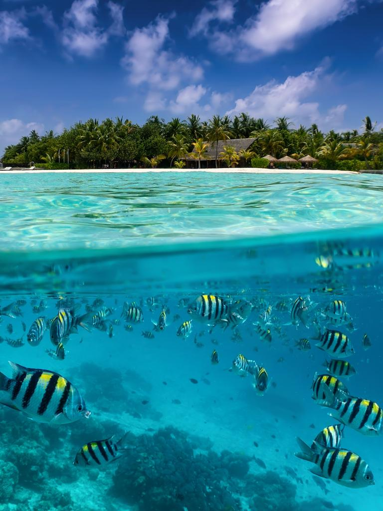 The Maldives is regarded as one of the world's most beautiful holiday spots. Picture: iStock