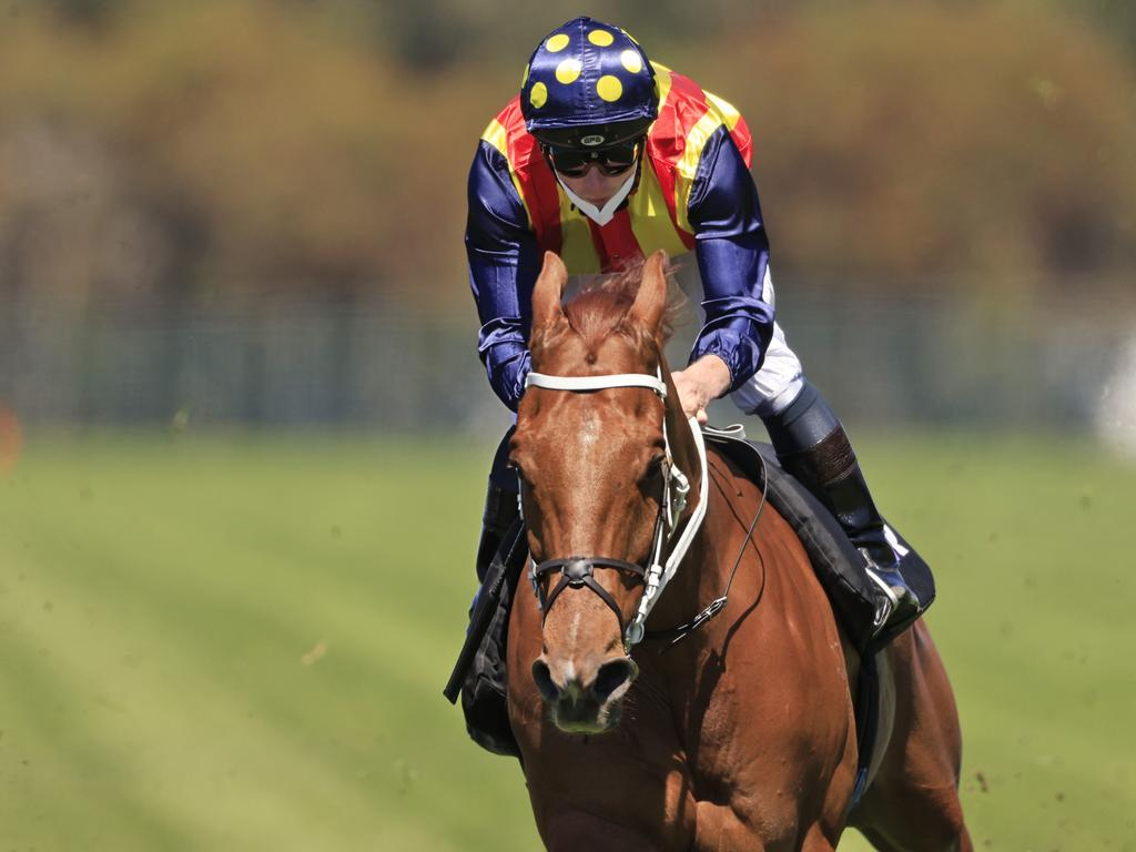 James McDonald on Nature Strip competes in a gallop at Rosehill.