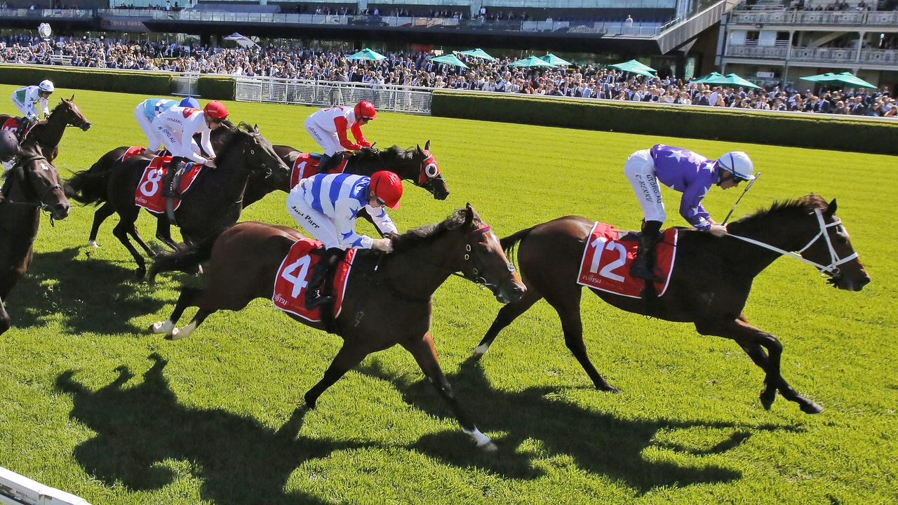 High Supremacy (No.8) chasing home Kiku in the Carbine Club Stakes. Picture: Mark Evans/Getty Images.