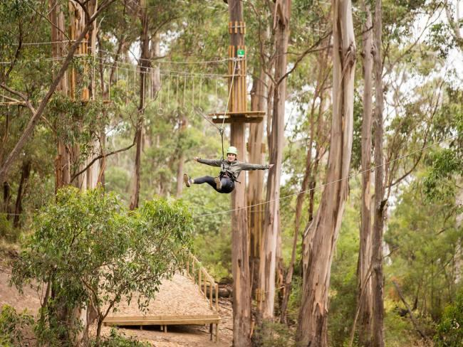 12/13Live Wire Park Lorne  Lorne is synonymous with being a relaxed seaside town and the gateway to The Great Ocean Road. Venture a little inland and you'll find the gravity-defying, Live Wire Park. Varied zip line circuits mean everyone is covered, as well as several other activities which don't involve heights, leaving those less adventurous far from bored. livewirepark.com.au