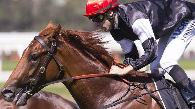 Jockey Jordan Childs steers Written By to victory in the Pago Pago Stakes. Picture: AAP