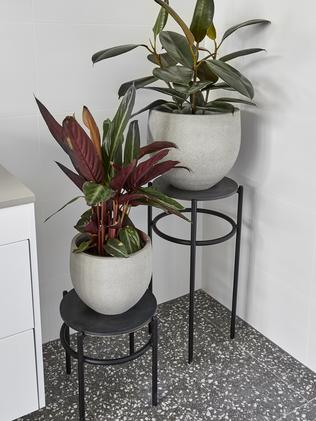 Plants filled a corner, but they were marked down for not utilising the space. Picture: The Block