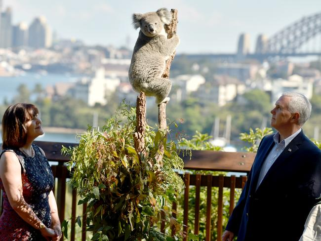 Mike Pence and his wife Karen look at a koala during a visit to Taronga Park Zoo on Sunday. Picture: Peter Parks-Pool/Getty Images