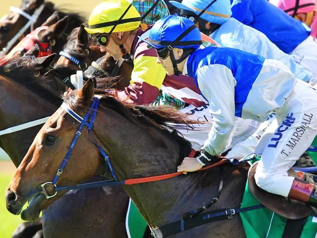Thoroughbred racing heads to Grafton in northern NSW on Sunday. Picture: Jenny Evans