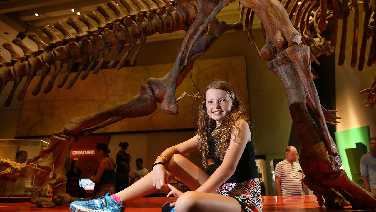 Display at the Queensland Museum. Picture: Sarah Marshall
