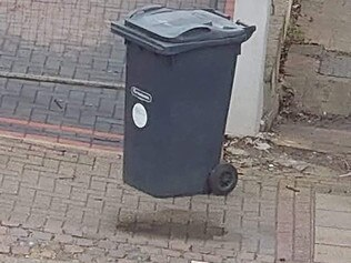 Photo of bin sums up life in isolation. Picture: Reddit