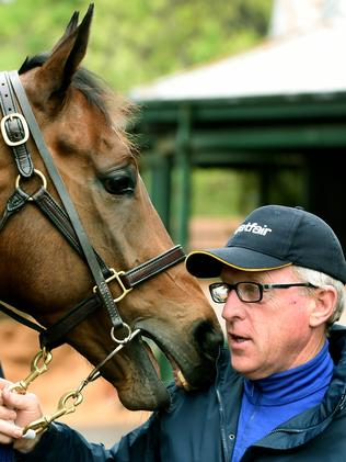 Mick Price is trying to teach Lankan Rupee to race off the pace this campaign. Picture: Jay Town