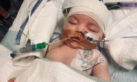 Melbourne baby with cancer contracted COVID in hospital