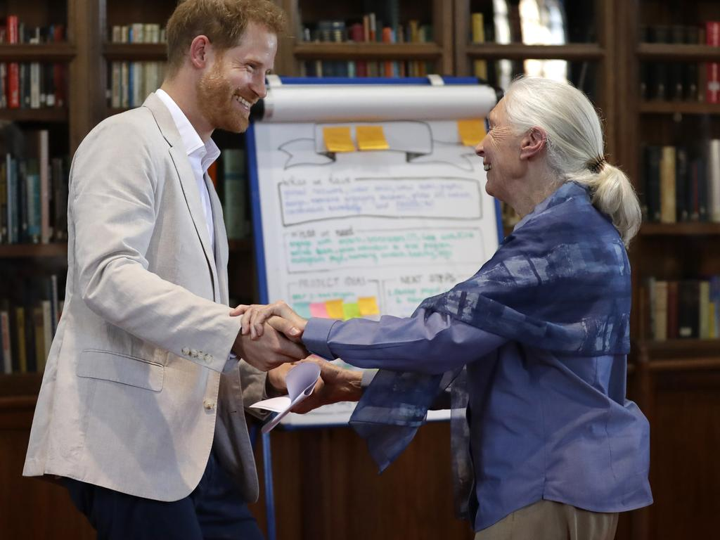 Prince Harry and Dr Jane Goodall. Picture: Getty