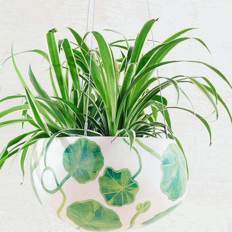 Angus & Celeste Decorative Pebble planter.