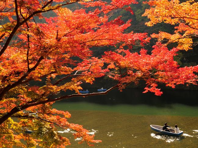 AUTUMN COLOURS Spring is a popular time to visit Japan because of the cherry blossoms but autumn is great too when there is red foliage on the trees. — Nino Lo Giudice
