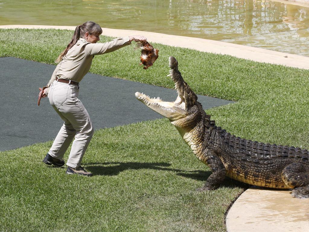 Teri Irwin at Australia Zoo. Picture: NCA NewsWire/Tertius Pickard
