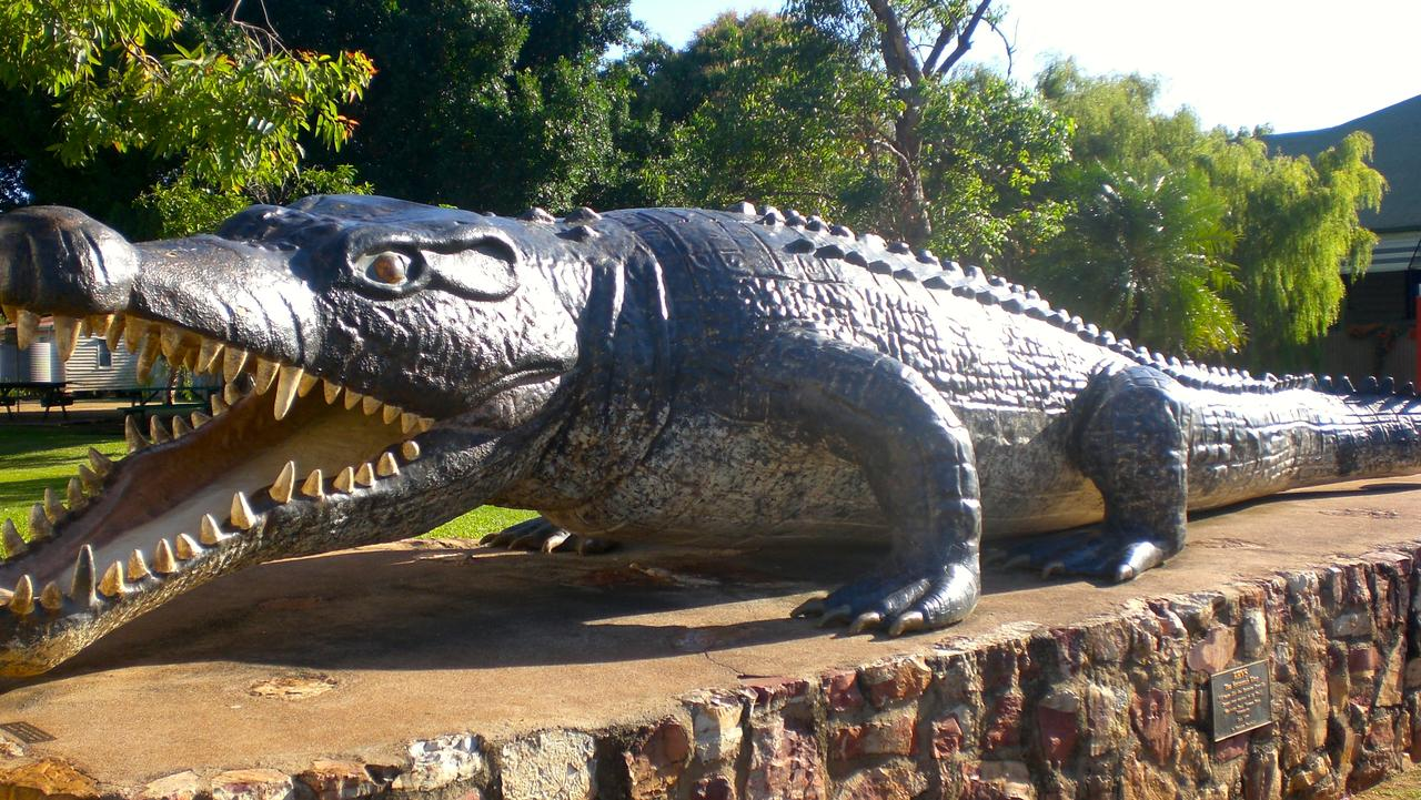 Saltwater croc Krys, the king of the Savannah