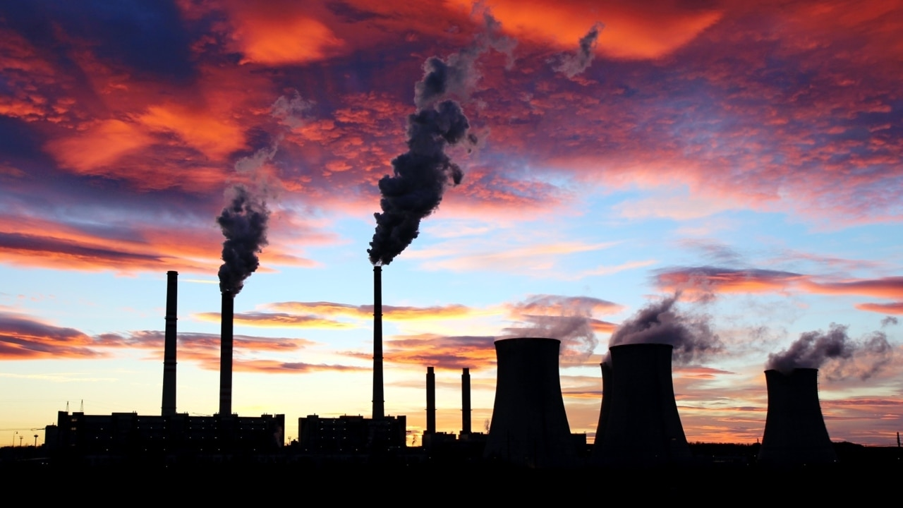 Net-zero carbon emissions target 'is absurd and would kill off industries': Jones