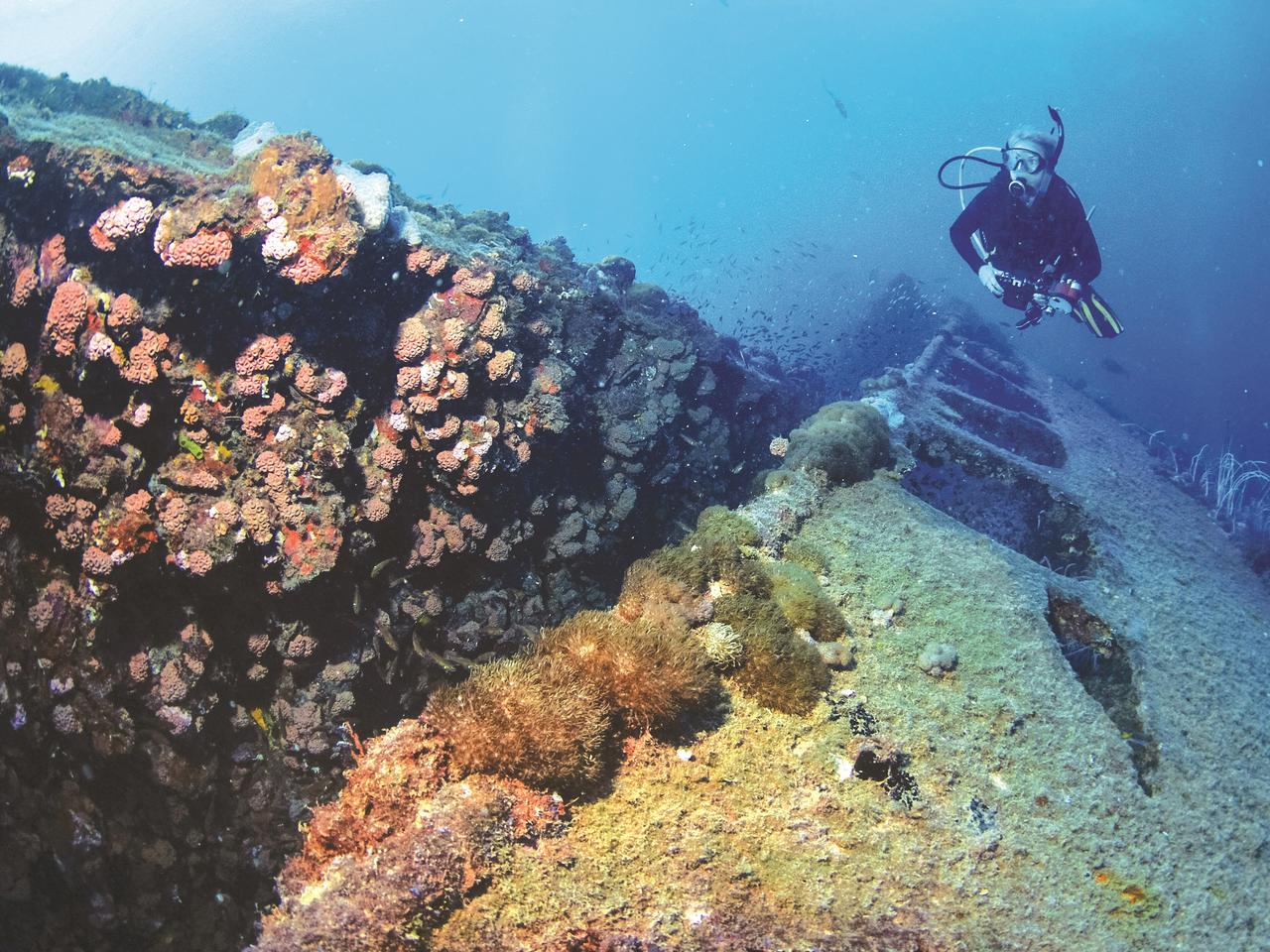 2AMHEW5 Diver exploring the historic SS Yongala shipwreck, Townsville, Great Barrier Reef, Queensland, Australia, Coral Sea, South Pacific Ocean (MR)