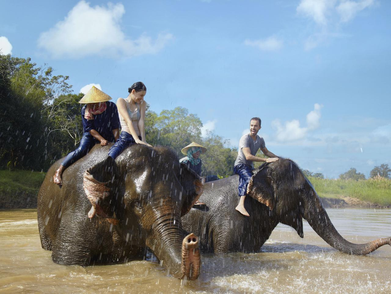 ESCAPE: TRAVEL LESSONS BY MARGARET BARCA - Mahout training: Gold Triangle Elephant bath time fun. Picture: Supplied