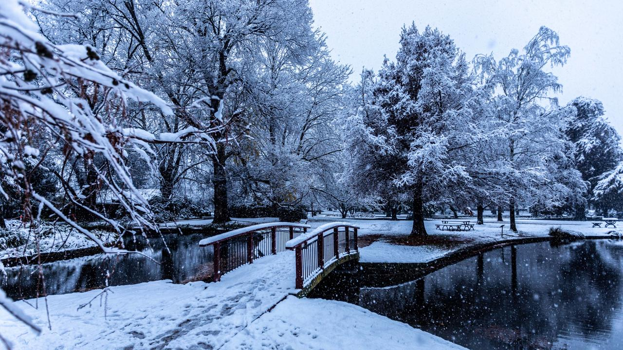 Heavy snowfall is pictured in the Orange Botanical Gardens in mid-western NSW as the region is blasted with freezing temperatures. Picture: Troy Pearson/NCA NewsWire