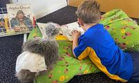 Why reluctant readers should read a book to a chook