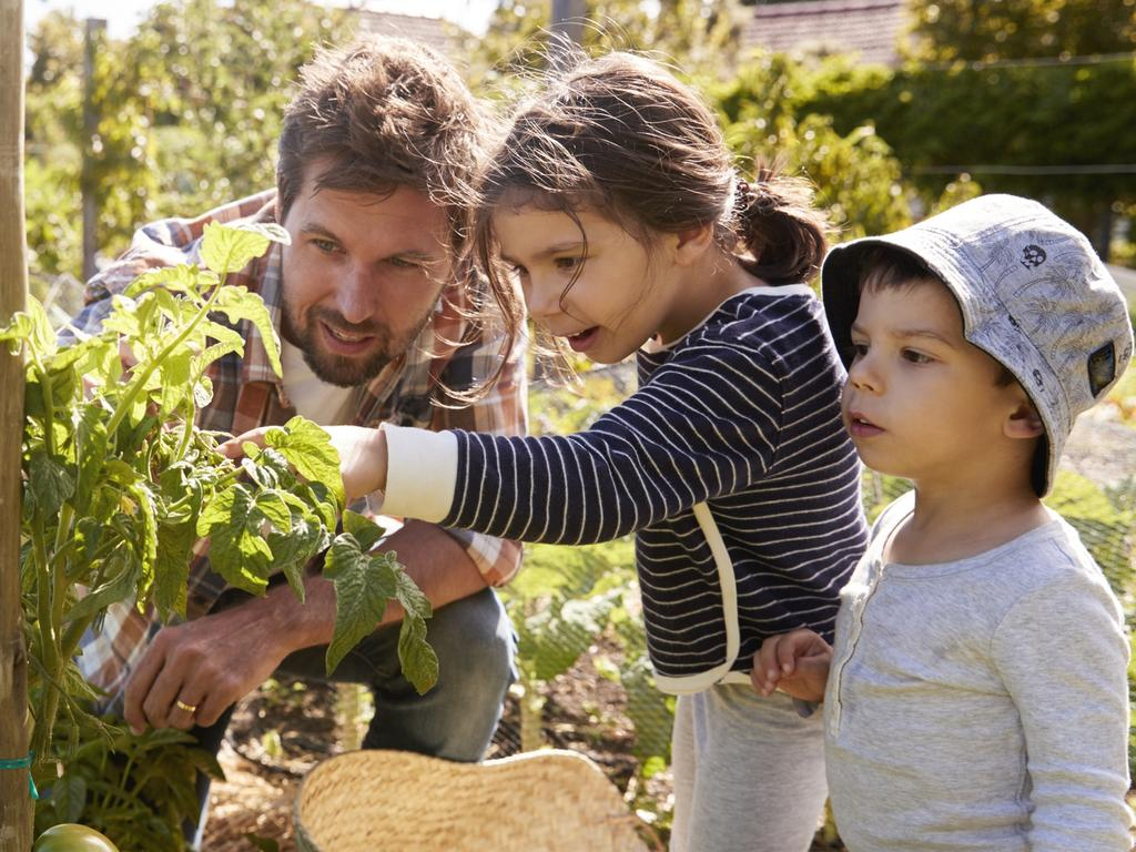 Parents role model good body image by being active and encouraging a healthy lifestyle. For Kids News and Hibernation. iStock image