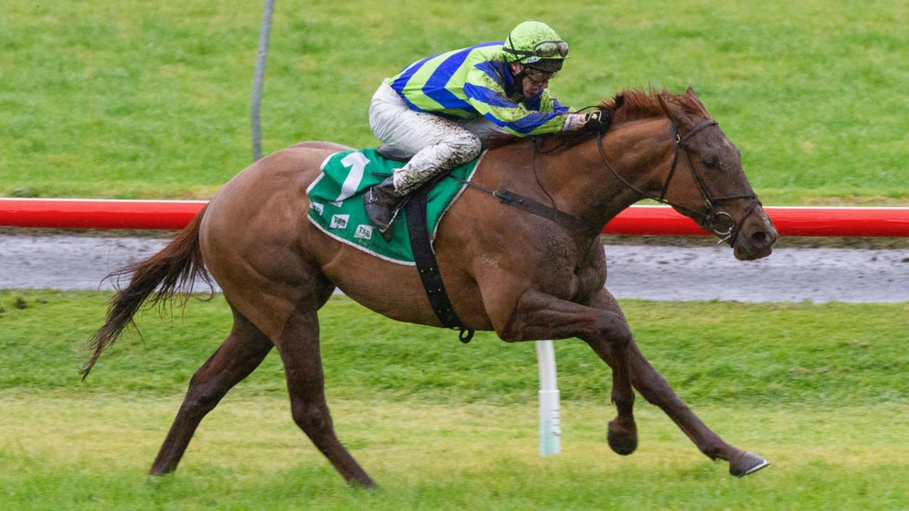 Beau Rossa has a new jockey booked for the Memsie Stakes. Photo Credit: Atkins Photography
