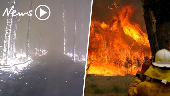 NSW and QLD bushfires: Catastrophic conditions forecast