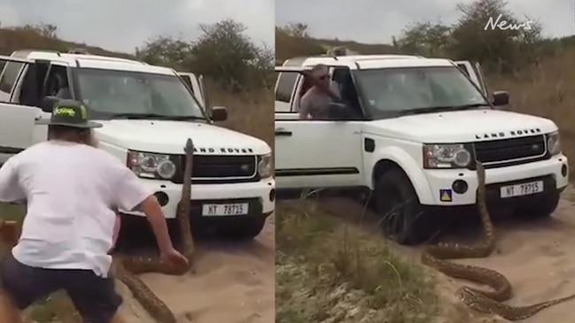 Giant python chases tourists around their Land Rover