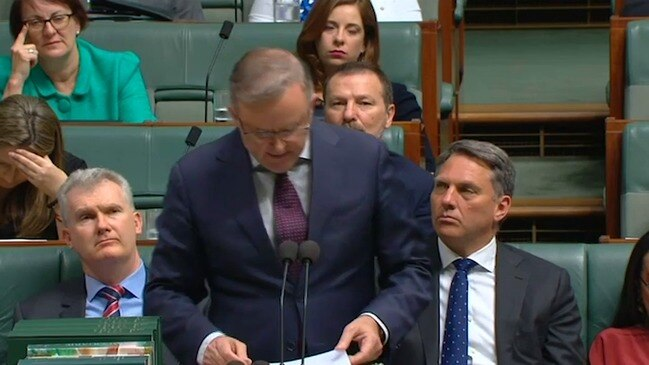 Albo connects climate change and bushfires, calls for bipartisan action