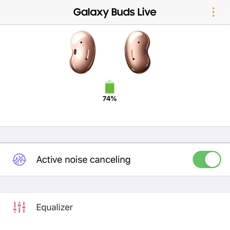 The Samsung Galaxy Buds Live iPhone app.