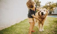 Five dog breeds to suit different kids' personalities
