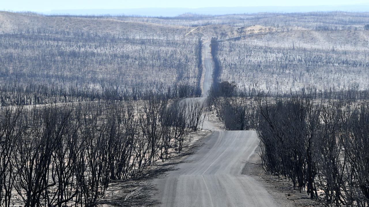 National Australia Bank will commit further financial support to bushfire-stricken communities. Picture: David Mariuz/ AAP