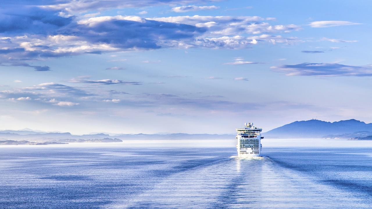 Some cruise passengers are best left on dry land. Picture: iStock